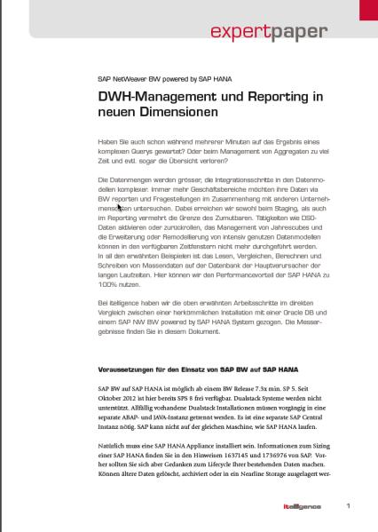 Bild expert paper DHW reporting on hana