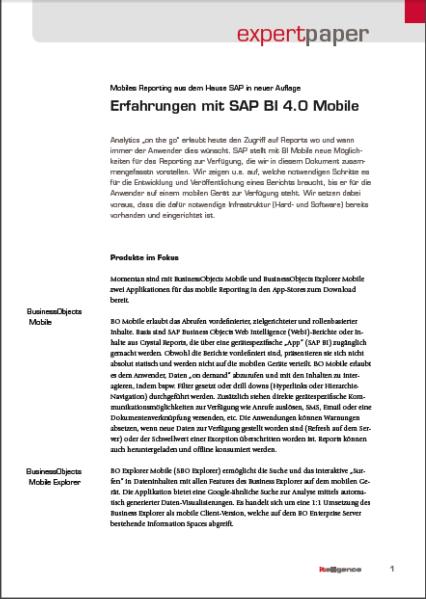 Bild BI Mobile expert paper
